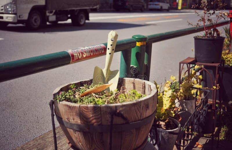 Petit jardin d'agrément en dehors d'une boutique de souvenirs à Tokyo image stock