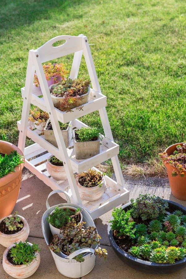 Petit jardin en pierre avec l'étagère de jardin photos libres de droits