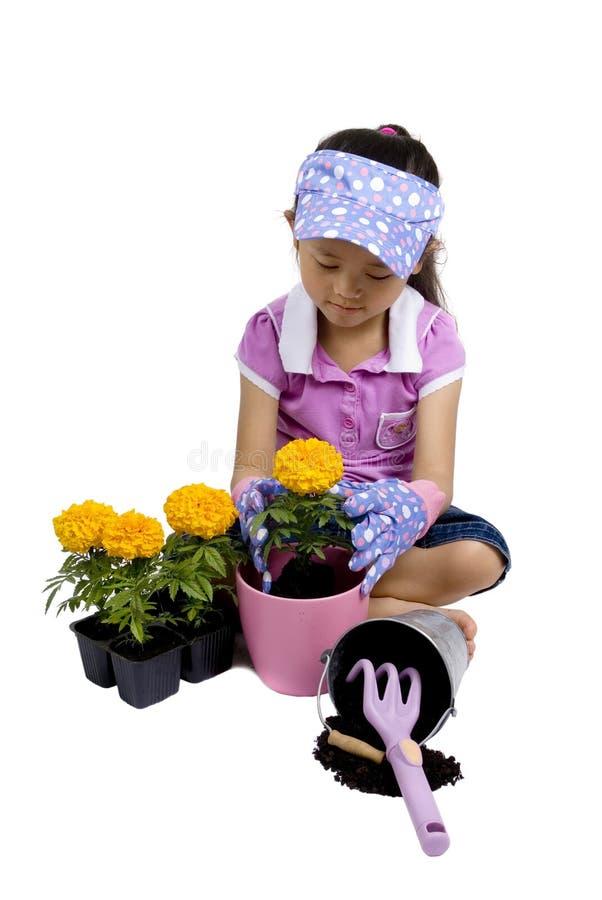 Petit jardinier 006 photos libres de droits