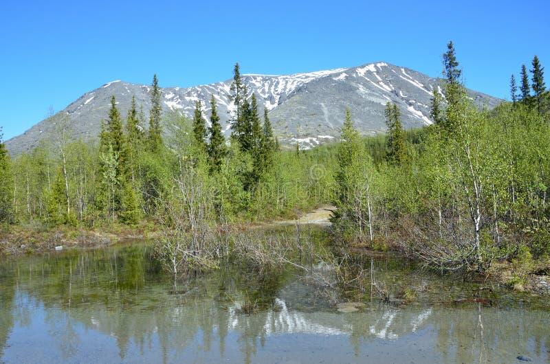 Petit lac anonyme en montagnes de Khibiny dans le jour d'été ensoleillé image stock
