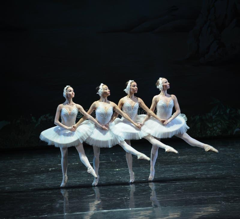 Petit lac swan de Lakeside-ballet de cygne du cygne-Le quatre images libres de droits