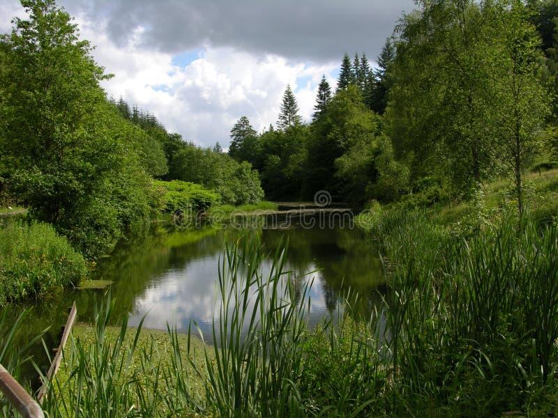 Petit lac - Vrads Sande photographie stock