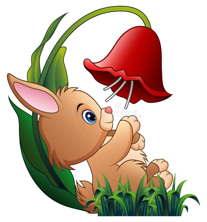 Petit lapin mignon jouant avec une fleur sur le fond blanc illustration libre de droits