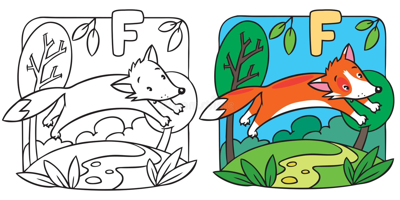 Petit livre de coloriage de renard rouge Alphabet F illustration stock