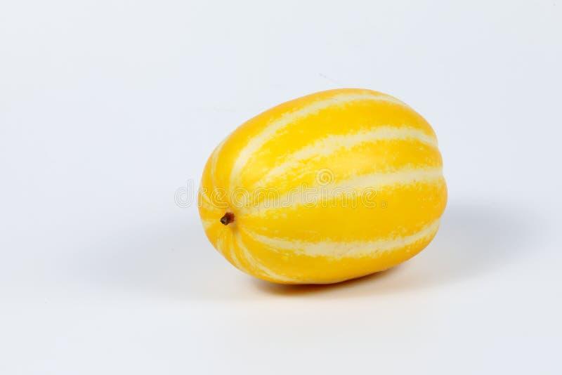 Petit melon jaune doux photo libre de droits