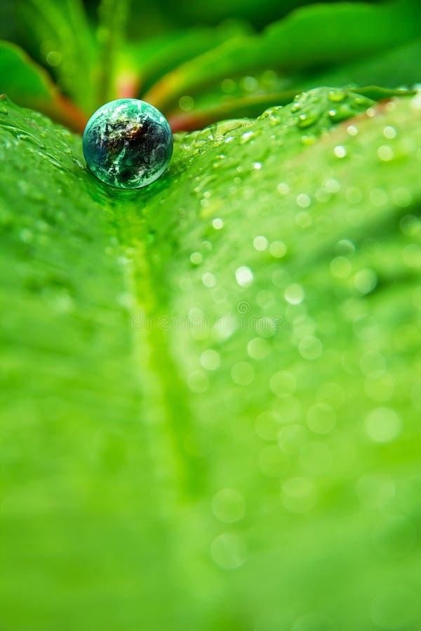 Petit monde en nature image stock
