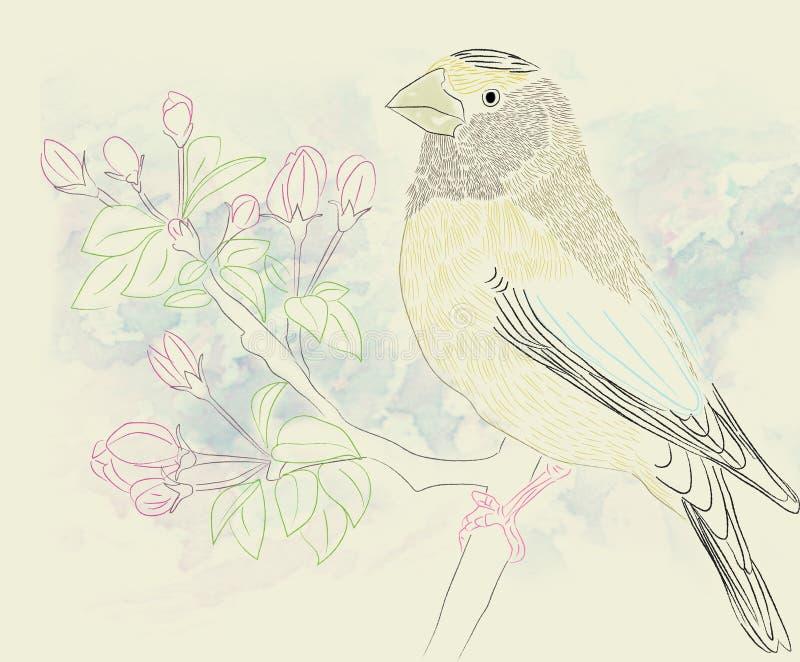 Petit oiseau sur le branchement images stock