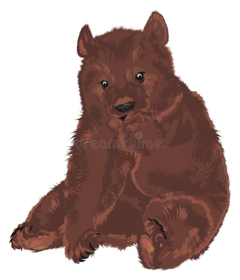 Petit ours brun illustration de vecteur