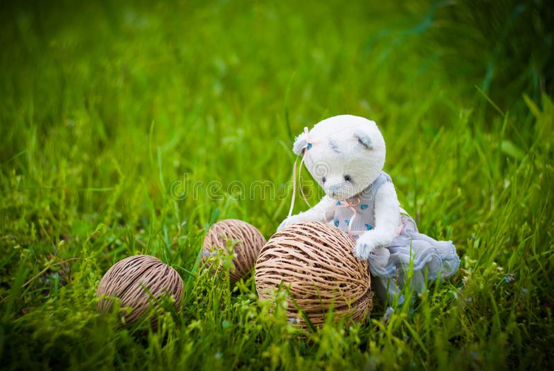 Petit ours de nounours photographie stock libre de droits