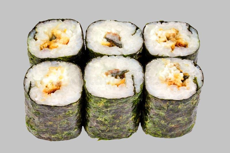 petit pain de maki de sushi avec l'anguille sur un fond gris photos libres de droits