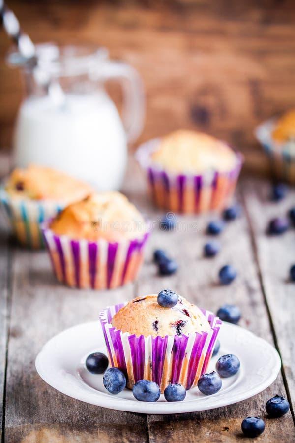 Download Petit Pain Fait Maison De Myrtille Avec Du Lait Image stock - Image du pain, cupcake: 56489683