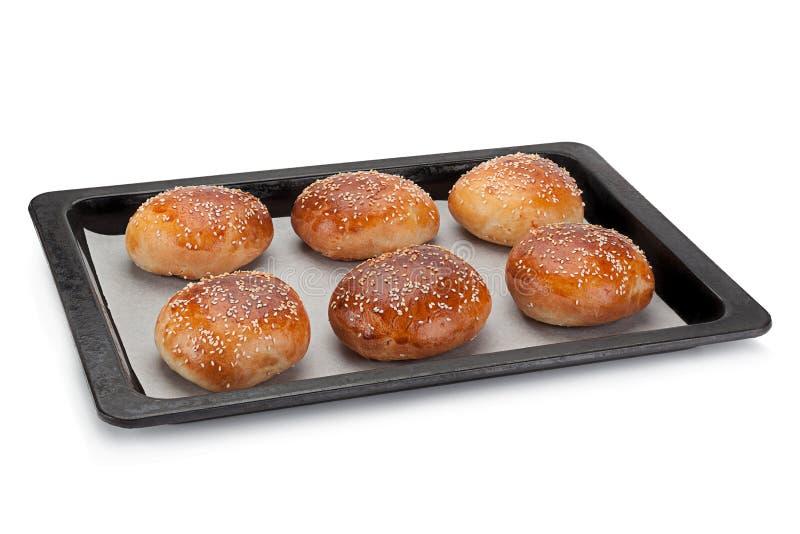 Petit pain fait maison pour l'hamburger image libre de droits