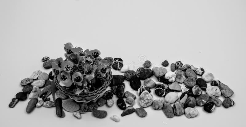 Petit panier en osier avec des fleurs photos stock