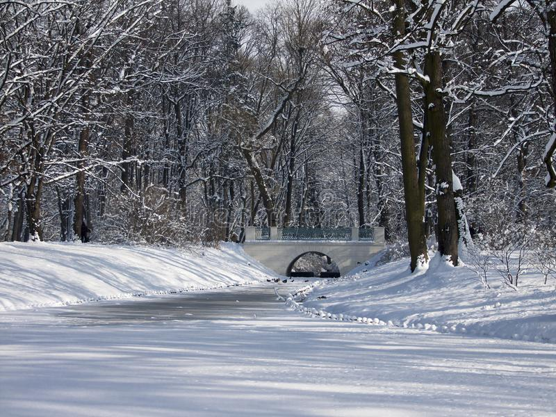 Petit pont au-dessus d'un courant entre les arbres couverts de neige photo libre de droits