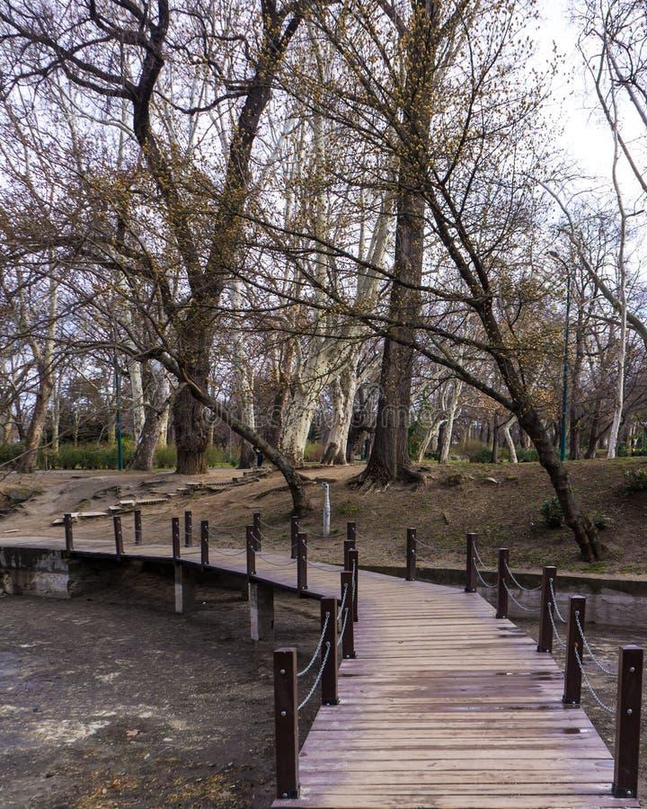 Petit pont au-dessus de rivière dans la forêt dans le vajdahunyad Budapest photo libre de droits