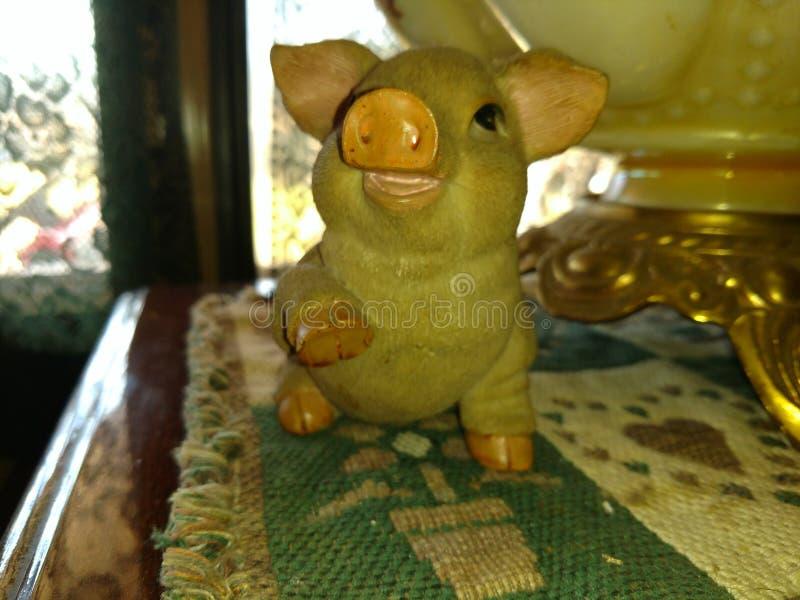 Petit porc photo stock