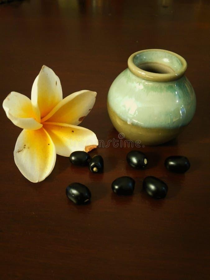 Petit pot avec des fleurs et des grains de frangipani image libre de droits