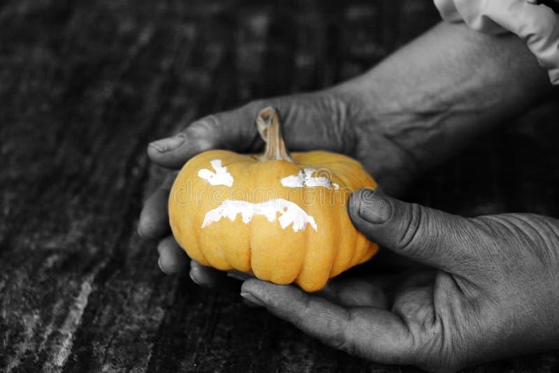 Petit potiron de Halloween photo stock