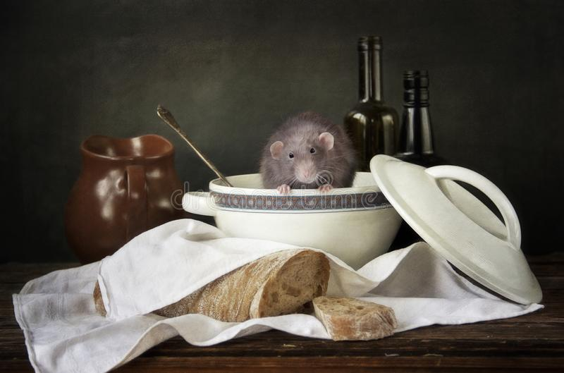 Petit rat gris mignon dans la soupière entourée par le pain et des bouteilles La vie toujours dans le style de cru avec un rat vi image libre de droits