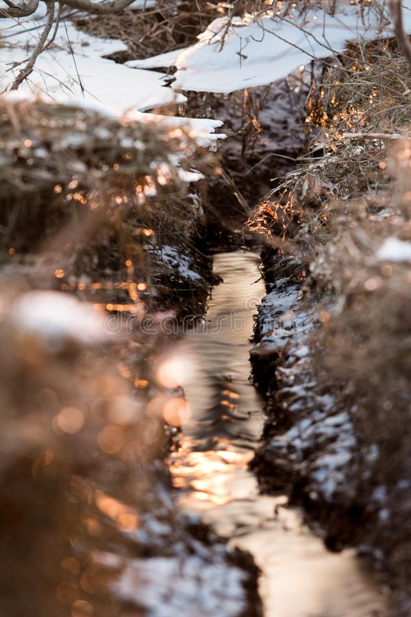 Petit ruisseau d'hiver photo libre de droits
