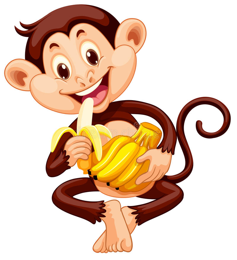 Petit singe mangeant la banane illustration stock