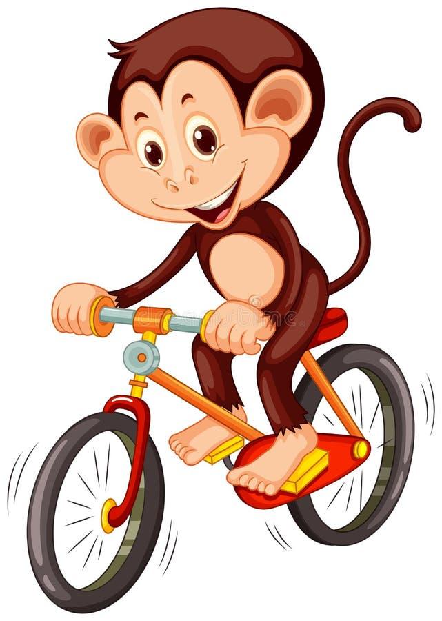 Petit singe montant une bicyclette illustration libre de droits