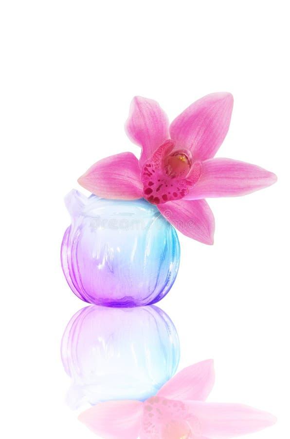 Petit vase en verre avec une orchidée photo stock