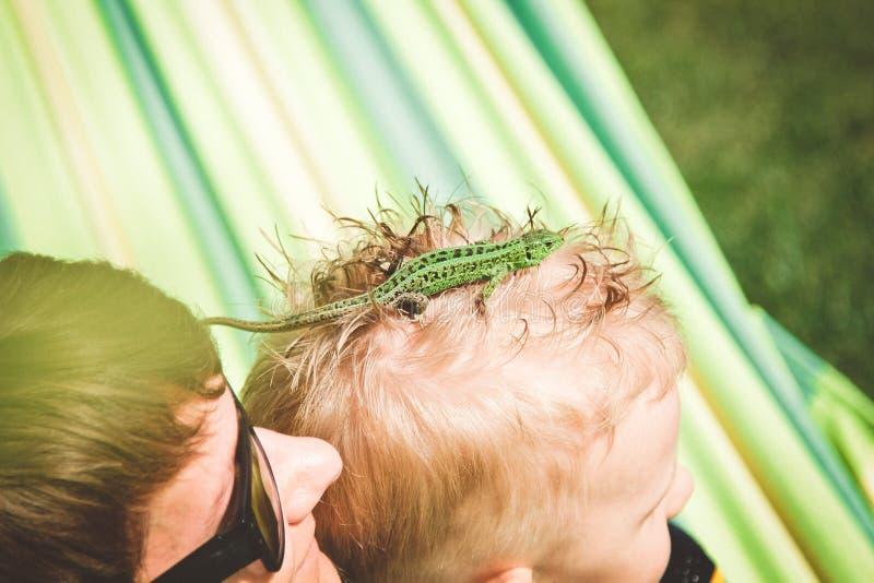 Petit vert de lézard rampe au-dessus de la tête du ` s d'enfant image stock