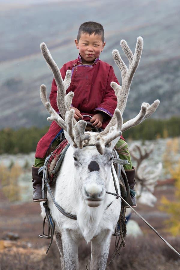 Petite équitation tsaatan de garçon avec son renne du ` s de famille photographie stock libre de droits