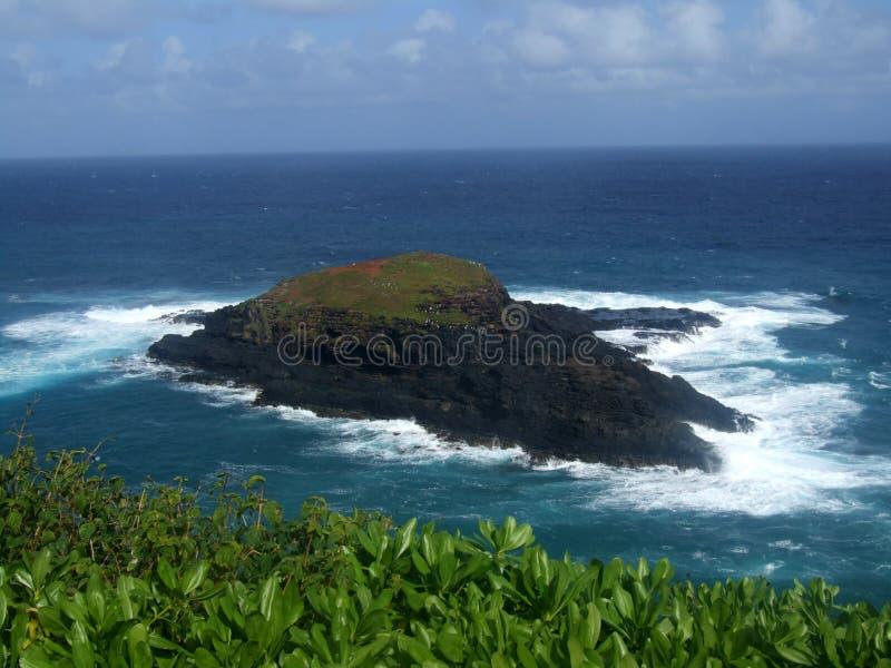 Petite île au point de Kilauea, Kauai, Hawaï photos stock