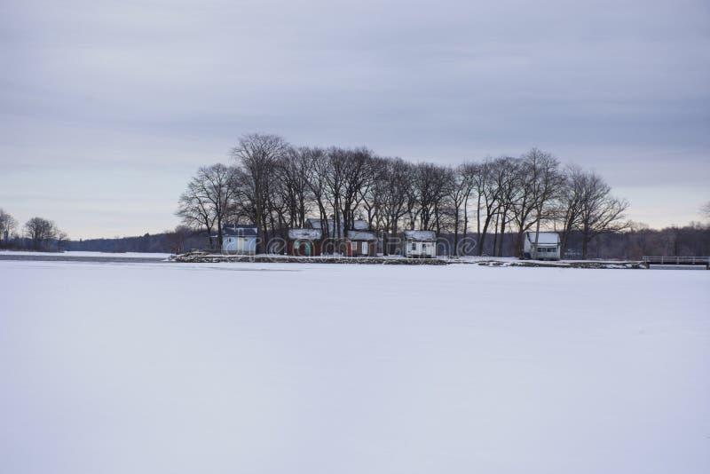 Petite île dans le lac congelé image libre de droits