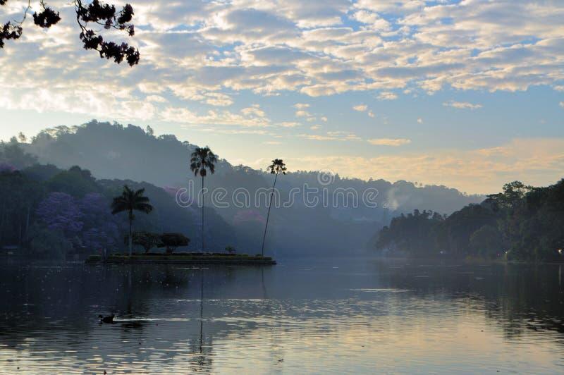 Petite île dans le lac kandy, Sri Lanka images libres de droits