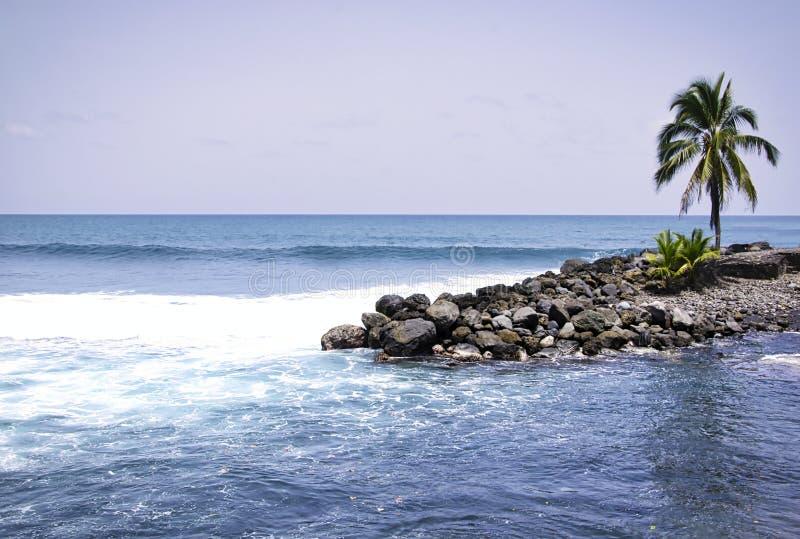 Petite île tropicale avec un palmier et belle mer bleue photos stock