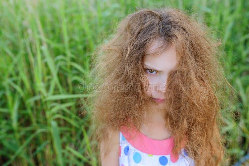 Petite belle fille avec les cheveux bouclés photos stock