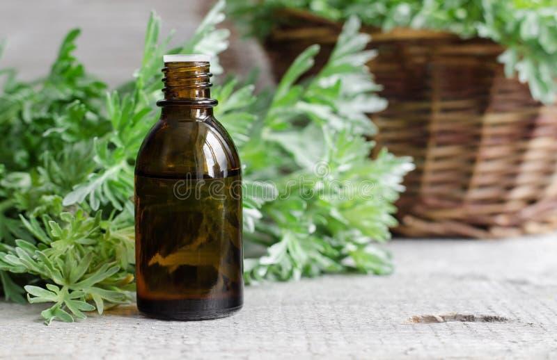 Petite bouteille d'essence d'absinthe essentielle photographie stock libre de droits