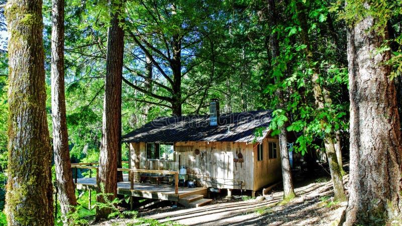 Petite cabine sur la rivière escroc sauvage et scénique photos stock
