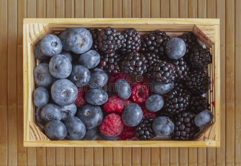 Petite caisse de petit wiA de caisse de baies - framboises, mûres et nectarines de Th, cerises, myrtilles et mûres plates image libre de droits