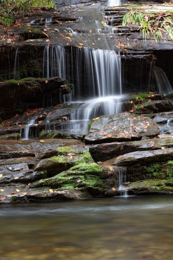 Petite cascade au-dessus des roches humides couvertes dans la mousse et des feuilles d'automne coulant dans un courant ci-dessous images stock