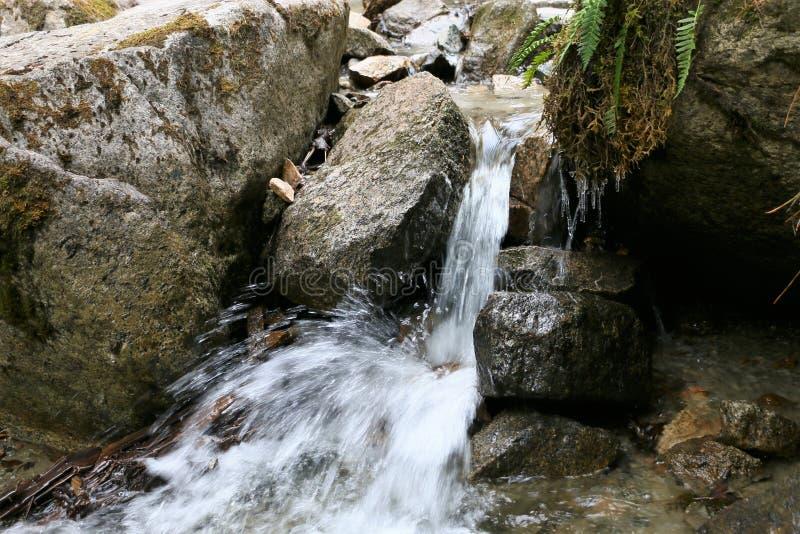 Petite cascade chez Reid Falls inférieur dans Skagway, Alaska photographie stock libre de droits