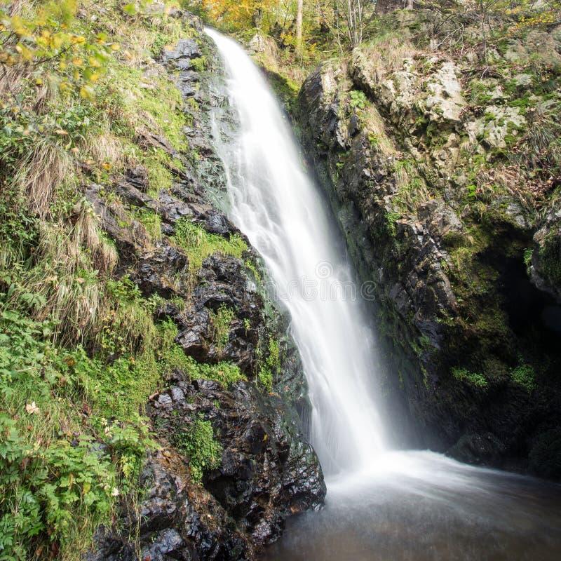 Petite cascade dans la forêt noire, Allemagne photographie stock