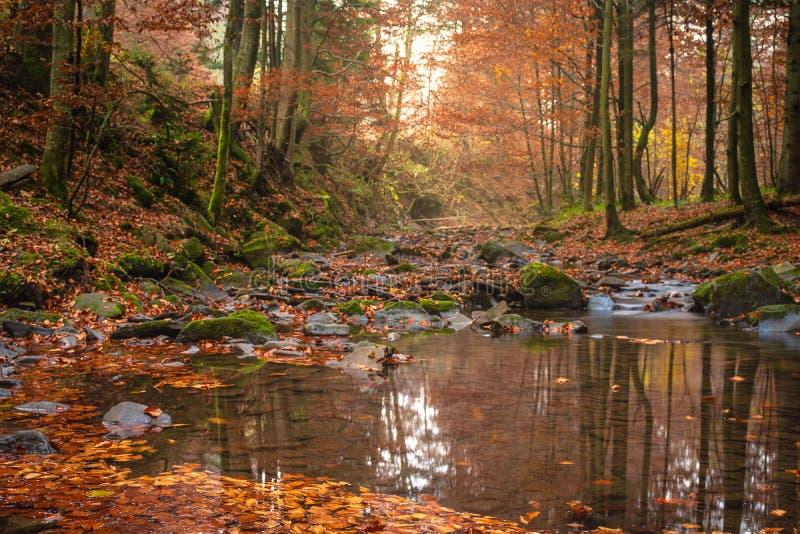 Petite cascade de montagne en automne Un beau paysage complètement de paix photographie stock libre de droits