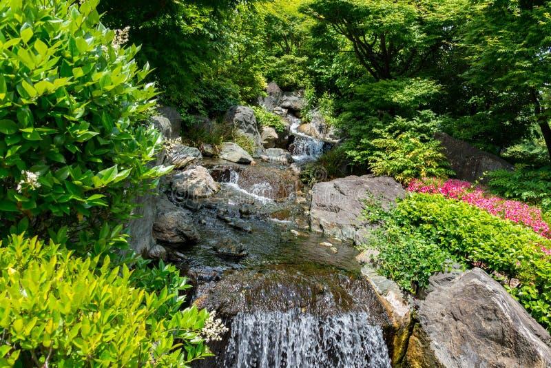 Petite cascade de montagne sur les roches couvertes de la mousse profonde dedans photos stock