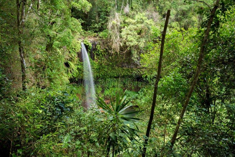 Petite cascade en parc national de montagne ambre image stock