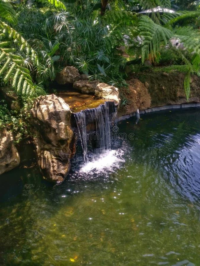 Petite cascade, petits ravins et étang photos stock