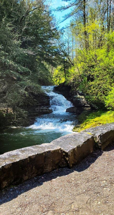 Petite cascade sur Sunny Spring Day images libres de droits