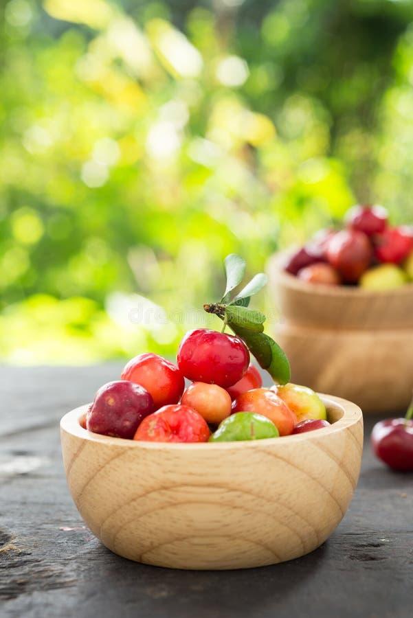 Petite cerise de fruit brésilien organique d'Acerola image libre de droits