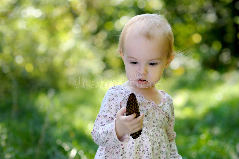 Petite chéri dans une forêt retenant un cône image stock