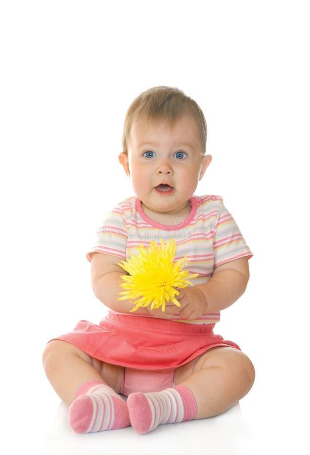 Petite chéri s'asseyante avec la fleur jaune #4 images libres de droits