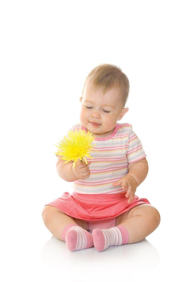 Petite chéri s'asseyante avec la fleur jaune image stock