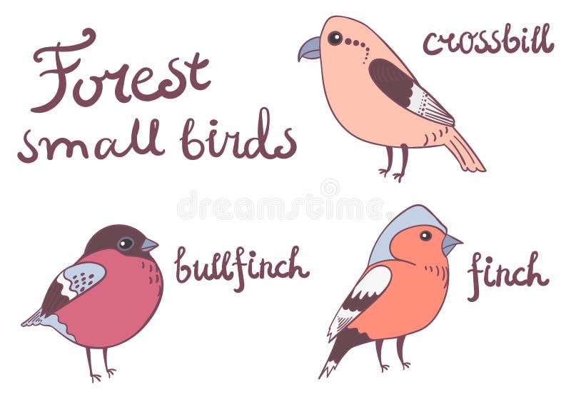Petite collection d'oiseaux de forêt illustration stock